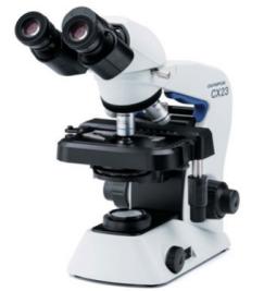 日本 OLYMPUS 生物显微镜