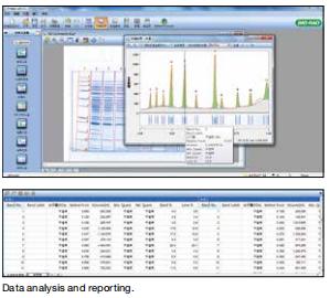 美国伯乐 凝胶/印迹分析软件